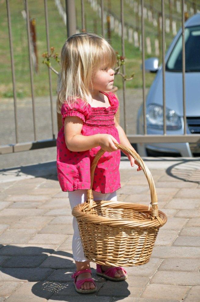 collecting corks at Chuparosa vineyards.